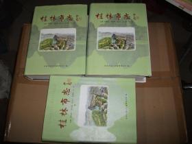 桂林市志(上中下)精装2020-04-17书架