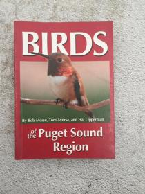 Birds of the Puget Sound Region (Regional Bird Books) Paperback