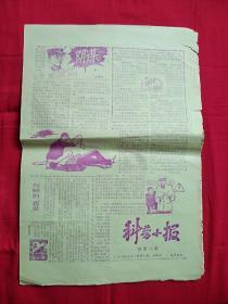 報紙: 科普小報(新第15期)8開4版