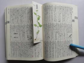 标准国语辞典(新订版)(日文原版)32开