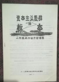 资本主义复辟的标本——二月黑风中的开封师院
