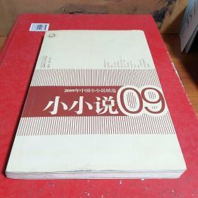 2009年中国小小说精选