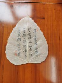 林培养—菩提叶书法小品2