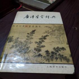 青花典藏:唐诗宋词鉴赏词典(珍藏版)