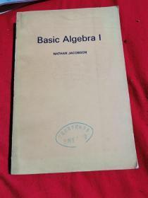 Basic Algebra 1(基本代数学 第一卷)