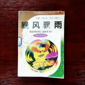 EFA402375 中华爱国主义文学名著文库-暴风骤雨