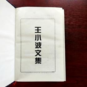 EFA404995 王小波��莅蹴缥募�(一版一印)