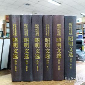 昭明文选译注(全六卷)