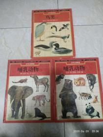 世界动物图鉴