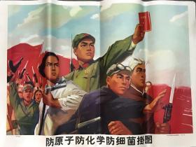 文革宣传画  防原子防化学防细菌挂图 76x53cm  品不错 1971年印