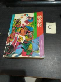 杨家将 中国古代通俗小说少年文库