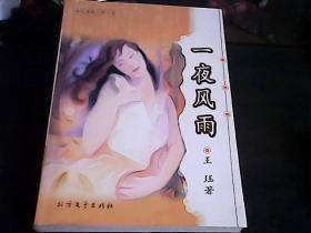 当代情爱心理小说:一夜风雨