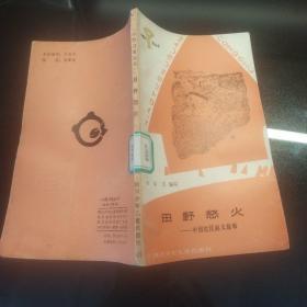 小图书馆丛书《 田野怒火  中国农民起义故事 》 插图本