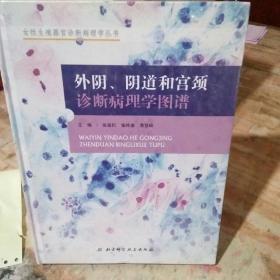 外阴、阴道和宫颈诊断病理学图谱,精装本