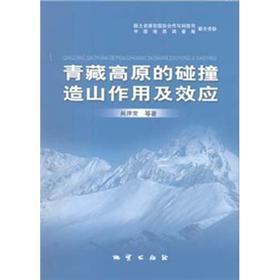 青藏高原的碰撞造山作用及效应