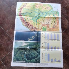 大挂图《亚马逊河流域的热带雨林》上海教育出版社