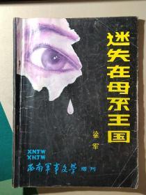 迷失在母系王国(西南军事文学增刊)