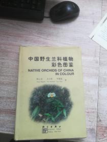 中国野生兰科植物彩色图鉴