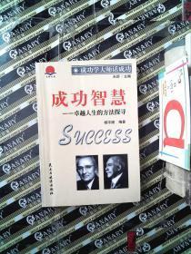 成功智慧:卓越人生的方法探寻