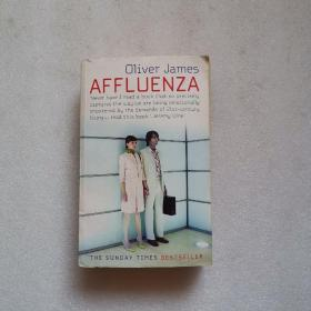 Affluenza The Secret of Being Successful and Happy