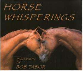 Horse Whisperings: Portraits by Bob Tabo