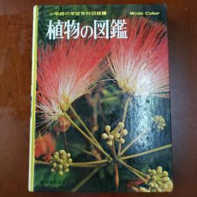 小学馆学习百科图鉴:植物的图鉴