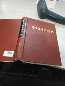 学生多用大辞典