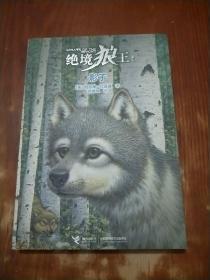 影子:绝境狼王系列