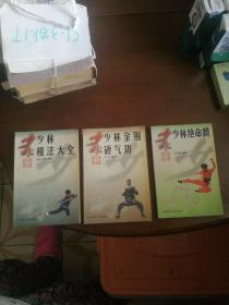 少林功夫丛书3本合售:《少林棍法大全》《少林绝命腿》《少林金刚硬气功》