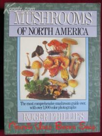 Mushrooms of North America(英语原版 平装本)北美蘑菇