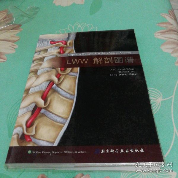LWW解剖图谱