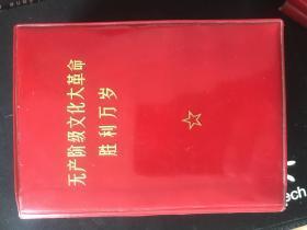 无产阶级文化大革命胜利万岁(上)