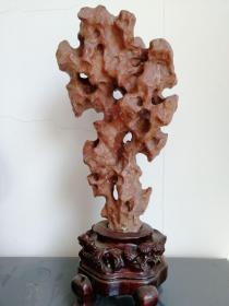 红太湖石一尊 案头清供 桌屏假山 皱漏瘦透 玲珑剔透