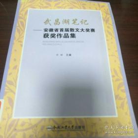 《武昌湖笔记 安徽省首届散文大奖赛获奖作品集》16开 dlq3
