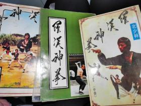 罗汉神拳3册合售