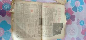 《长春君子兰周报》1984年 创刊号---10期 13期------1985年22期 合售都是 散张