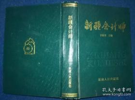 新疆会计师[第—卷]