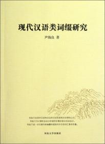 现代汉语类词缀研究
