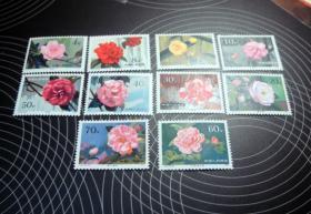 1979年 T37 山茶花 邮票 原胶全品