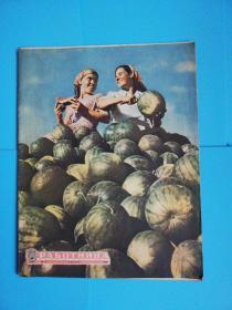 劳动者8开俄文原版杂志1960年