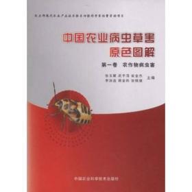 中国农业病虫草害原色图解(套装共4册)(存大16开)