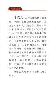 失眠/中国专业作家小说典藏文库·肖克凡卷