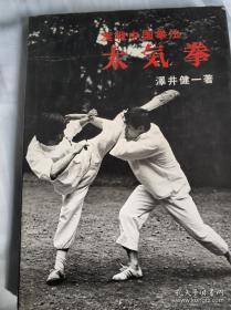 实战中国拳法太气拳