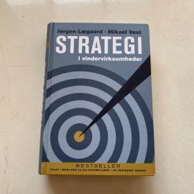 STRATEGI i vindervirksomheder 获胜企业的策略