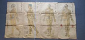针灸取穴参考图/1959年彩色套印四张全