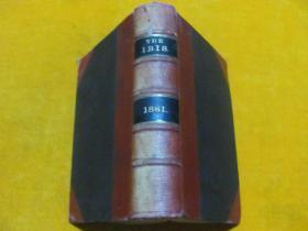 THE IBIS 1881 锛��辨������锛�����绾辩簿瑁���