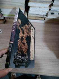 奇石 中国艺术品收藏鉴赏全集:典藏版