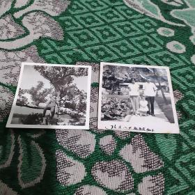 1960年照片2张