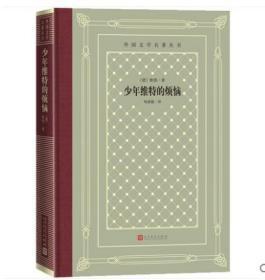 全新正版 少年维特的烦恼 网格本 歌德 杨武能译 世界名著文学经典 人民文学出版社