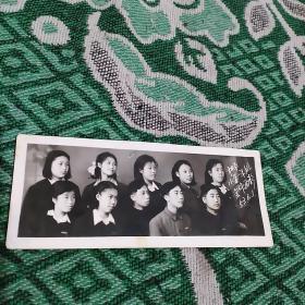 1953年同事合影照